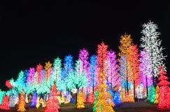Reihe der LED-Baum-Dekoration Stockbild