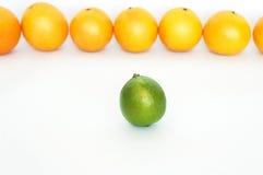 Reihe der Orangen mit Kalk Stockfotografie