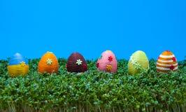 Reihe der Ostereier auf Kresse Lizenzfreies Stockbild