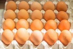Reihe des Eies Stockbilder