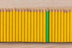 Reihe des gelben und grünen Bleistifts Stockbilder