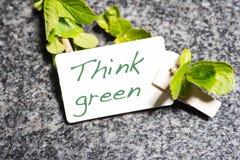 Reihe mit denken Grün mit einem Klipp an einer Niederlassung Lizenzfreies Stockbild