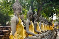 Reihe von Buddha in einem alten thailändischen Tempel bei Ayuthaya Thailand Lizenzfreie Stockfotos