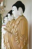 Reihe von Buddhas Stockfotografie