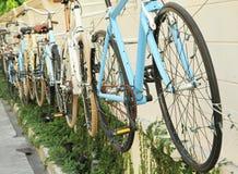 Reihe von den Fahrrädern verziert auf der Wand Stockfotografie