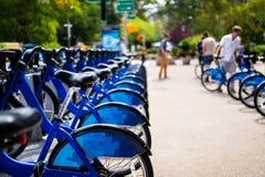 Reihe von den Fahrrädern, zum in der Stadt zu mieten Stockfoto