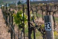 Reihe von Ernten auf einem Bauernhof mit numeriertem Zeichen stockfotografie