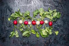 Reihe von frischen weißen und roten Rettichen mit Blättern auf dunklem Weinlesehintergrund Stockfotografie