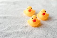 Reihe von gelben Enten auf weißem Hintergrund Führung und folgendes Konzept stockfotografie