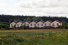 Reihe von Häusern in der Straße durch das grüne Feld, vor dem Wald Stockfotografie