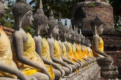 Reihe von heiligem Buddha in Ayutthaya Stockbild