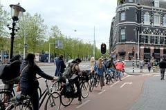Reihe von Radfahrern vor Ampeln Lizenzfreie Stockfotos