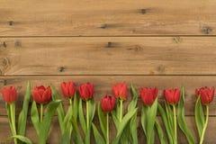 Reihe von roten Tulpen auf hölzernem Hintergrund stockfoto