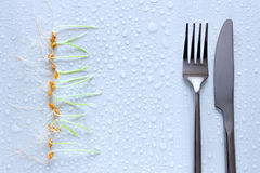 Reihe von Weizensprösslingen und -gabel mit Messer Heller Hintergrund mit Lizenzfreie Stockfotos