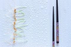 Reihe von Weizensprösslingen und von japanischen Essstäbchen Heller Hintergrund Stockfotos