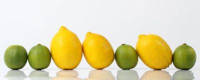 Reihe von Zitronen und von Kalken Lizenzfreies Stockfoto