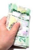 Reihe von zwanzig kanadischen Dollar lizenzfreies stockbild