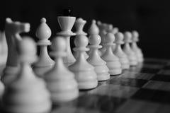 Reihe weißes Schach stellt konzentriert und unfocused auf hölzernes Schachbrett als Strategiespiel-Konzept-Schwarzweiss-Monochrom Lizenzfreie Stockfotografie