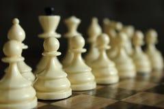 Reihe weißes Schach stellt konzentriert und unfocused auf hölzernes Schachbrett als Strategiespielkonzept dar Stockfotografie