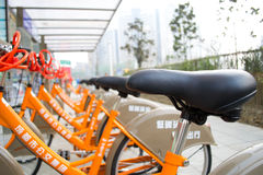 Reihen der allgemeinen Fahrräder Lizenzfreie Stockfotografie