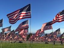 Reihen der amerikanischer Flaggen Stockfotos