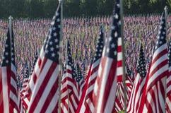 Reihen der amerikanischer Flaggen Lizenzfreies Stockbild