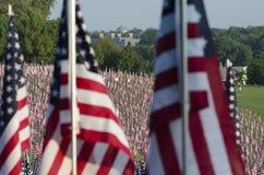 Reihen der amerikanischer Flaggen Stockbild
