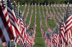 Reihen der amerikanischer Flaggen Lizenzfreies Stockfoto