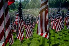 Reihen der amerikanischer Flaggen Stockfoto