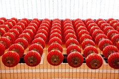 Reihen der chinesischen Laternen Lizenzfreie Stockfotografie