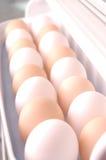 Reihen der Eier Lizenzfreies Stockfoto