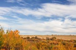 Reihen der eingewickelten Ernte in der Herbstlandschaft Lizenzfreie Stockfotos