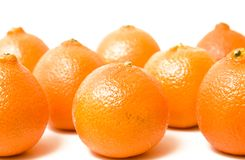 Reihen der Orangen Lizenzfreie Stockfotografie