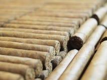 Reihen der Zigarren Lizenzfreies Stockbild