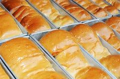 Reihen des frischen Brotes Stockbilder