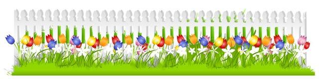Reihen-Tulpe-weißer Pfosten-Zaun