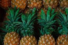 Reihen von Ananas auf dem Fruchtzähler in Thailand stockbild