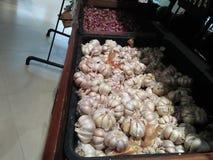 Reihen von roten und weißen Zwiebeln von der biologischen Landwirtschaft lizenzfreie stockbilder