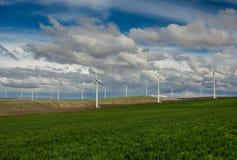Reihen von Windkraftanlagen und von grasartigen Feld des Rollens Lizenzfreie Stockbilder