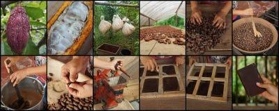 Reihenfolge von 12 Fotos, die den Prozess unterrichten, um Schokolade zu machen stockbild