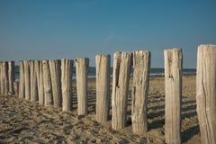 Reihenwellenbrecher im Sand, Cadzand-Schlechtes, die Niederlande stockbilder
