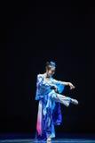 Reiki蛇中国古典舞蹈迷人的这诞生  免版税库存照片