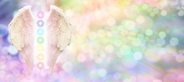 Reiki Angel Wings and Seven Chakras website header. Angel wings and seven chakras on pastel rainbow colored bokeh background with copy space on right hand side Stock Photography