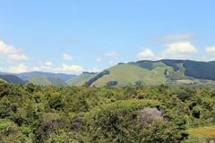 Reikorangi Valley, Kapiti, New Zealand. Royalty Free Stock Photo