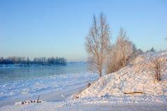 Reimen Sie auf den Niederlassungen im Winter in einem Wald nahe einem gefrorenen Fluss Stockfoto