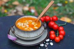 Rein rustique Bean Soup avec des haricots et des carottes Image libre de droits