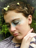 Reina de hadas 1 Fotos de archivo