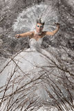 Reina de la nieve Imagenes de archivo
