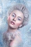 Reina de la nieve Retrato de la muchacha de la fantasía Retrato de la hada del invierno Mujer joven con maquillaje artístico de p Fotografía de archivo libre de regalías