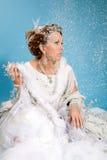 Reina hermosa del hielo Foto de archivo